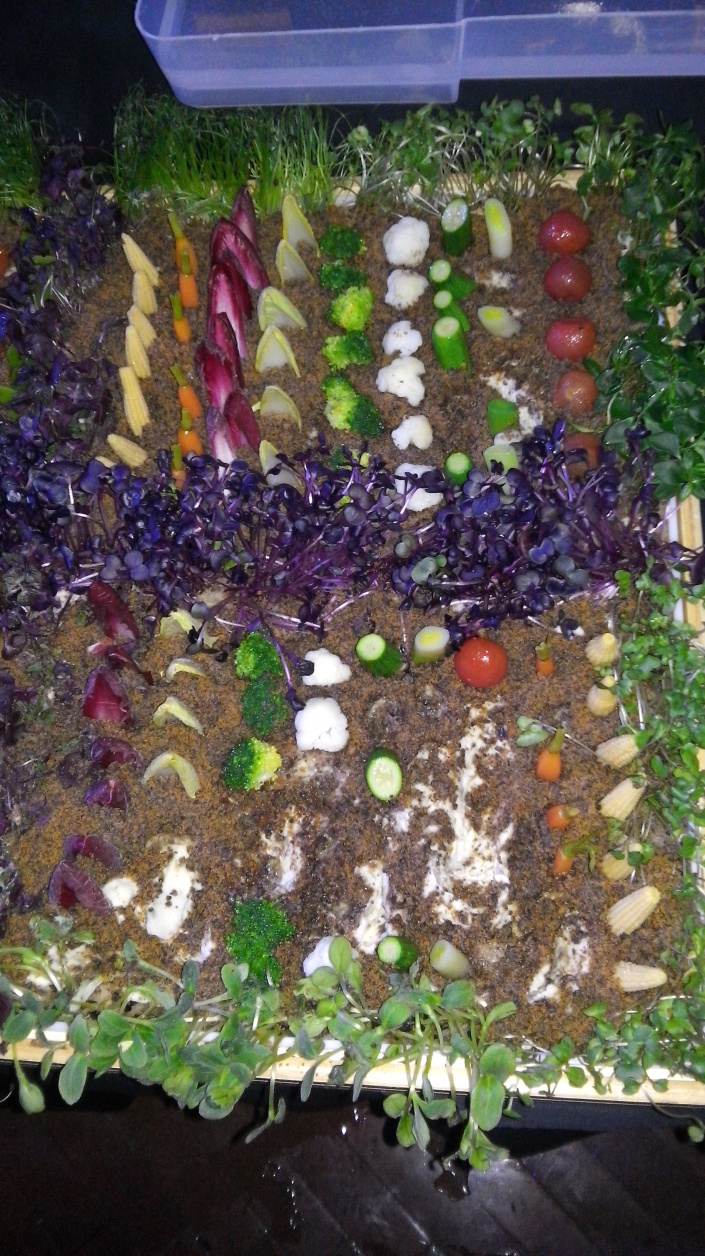 Muestra del huerto de verduras que se ofrece en SUBLIMOTION en restaurante de Paco Roncero